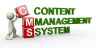 custom-cms-development